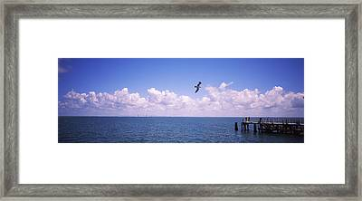 Pier Over The Sea, Fort De Soto Park Framed Print by Panoramic Images