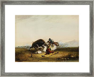 Pierre And The Buffalo Framed Print by Alfred Jacob Miller