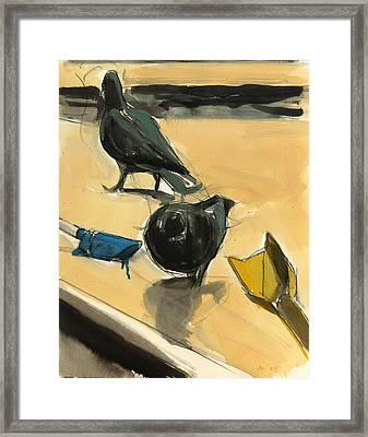 Pigeons Framed Print by Daniel Clarke