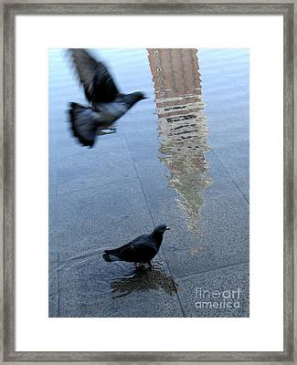 Pigeons In Piazza San Marco. Venice. Italy. Framed Print by Bernard Jaubert