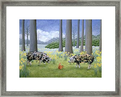 Piggy In The Middle Framed Print by Ditz