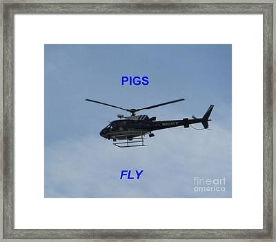 Pigs Fly Framed Print by Joshua Bales