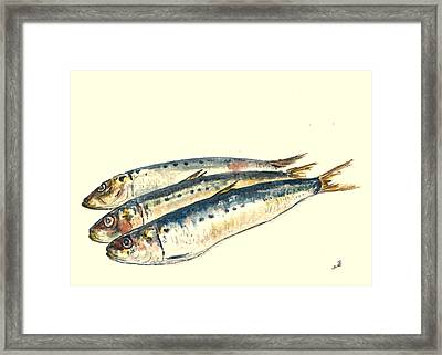 Pilchards Framed Print by Juan  Bosco