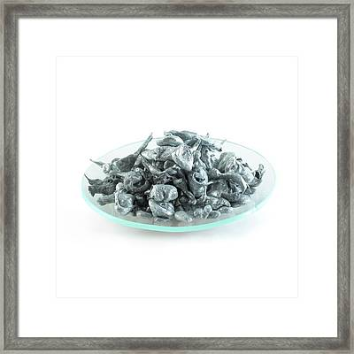 Pile Of Zinc Granules Framed Print by Science Photo Library