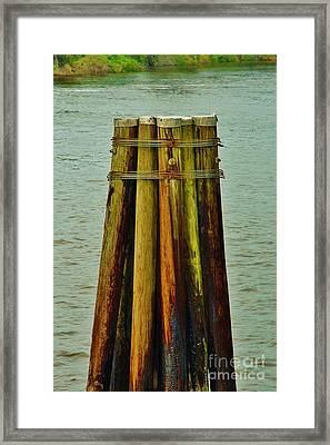 Piling Framed Print by Lynda Dawson-Youngclaus