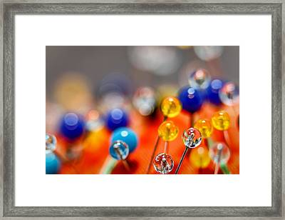 Pin Cushion Framed Print by Chuck Bush