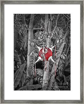 Pinata In Woods Framed Print by Joan  Minchak