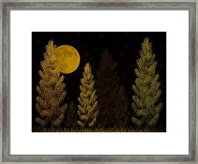 Pine Forest Moon Framed Print by David Dehner