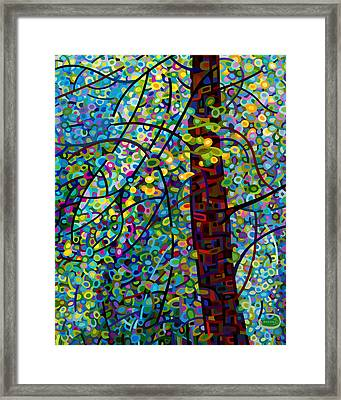 Pine Sprites Framed Print by Mandy Budan