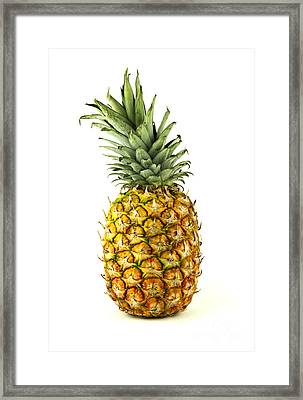 Pineapple Framed Print by Blink Images