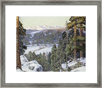 Pines In Winter Framed Print by George Gardner Symons