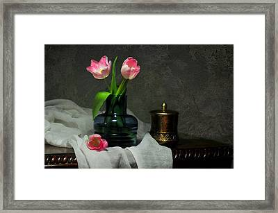 Pink And Blue Framed Print by Diana Angstadt