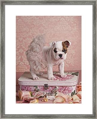 Pink Ballerina Framed Print by Lisa Jane