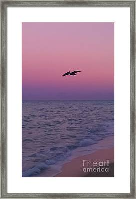 Pink Beach Sunset Framed Print by Charlie Cliques