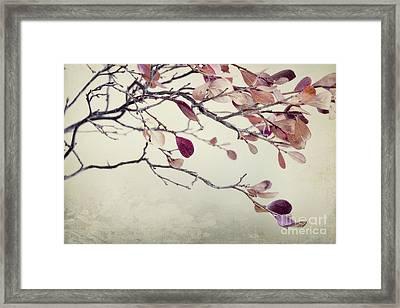 Pink Blueberry Leaves Framed Print by Priska Wettstein