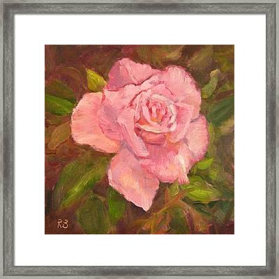 Pink Delight Framed Print by Robie Benve