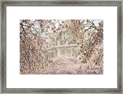 Pink Dream Framed Print by Sylvia Cook