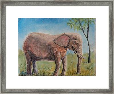 Pink Elephant Framed Print by Richard Goohs