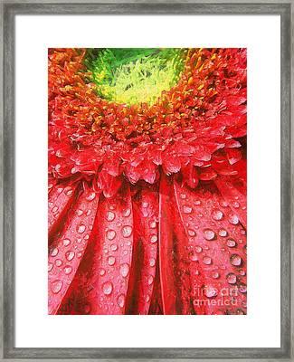 Pink Gerbera Flower Framed Print by Odon Czintos