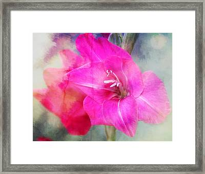 Pink In The Clouds Framed Print by Cathie Tyler