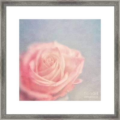 pink moments I Framed Print by Priska Wettstein