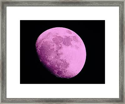 Pink Moon Framed Print by Tom Gari Gallery-Three-Photography