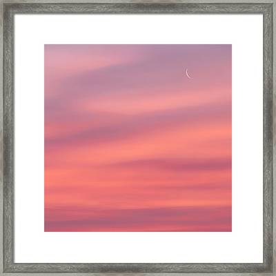 Pink Moon Square Framed Print by Bill Wakeley