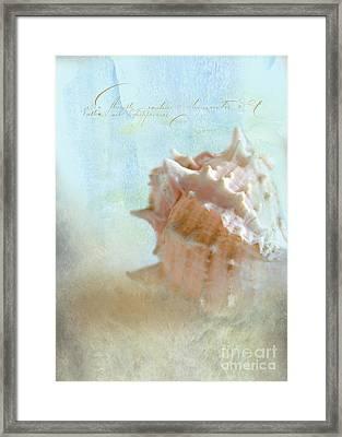 Pink Murex Seashell Framed Print by Betty LaRue