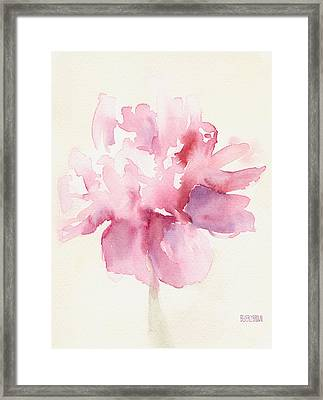 Pink Peony Watercolor Paintings Of Flowers Framed Print by Beverly Brown