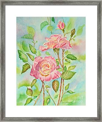 Pink Roses And Bud Framed Print by Kathryn Duncan