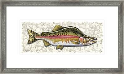 Pink Salmon Spawning Phase Framed Print by JQ Licensing