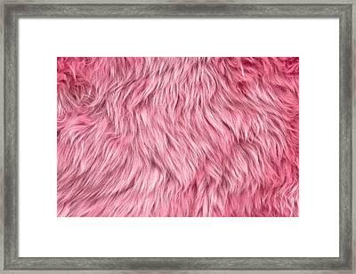 Pink Sheepskin Framed Print by Tom Gowanlock