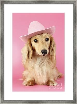 Pink Times Framed Print by Greg Cuddiford
