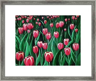 Pink Tulip Field Framed Print by Anastasiya Malakhova