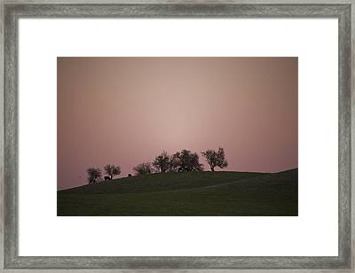 Pink Twilight Framed Print by Joel Moranton