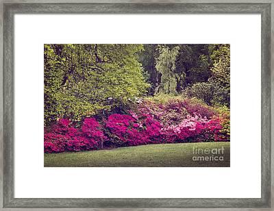 Pink Wave Framed Print by Svetlana Sewell