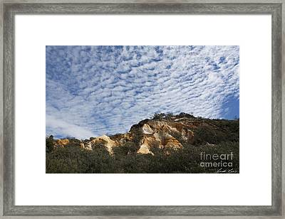 Pinnacles Of Fraser Island Framed Print by Linda Lees