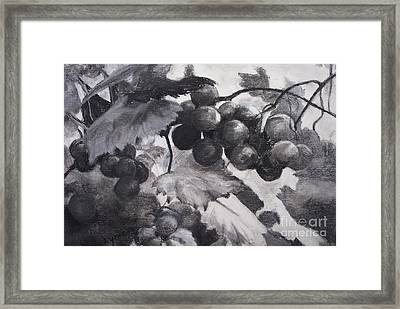 Pinot Noir Framed Print by Mary Lynne Powers