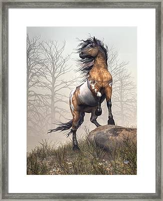 Pinto Framed Print by Daniel Eskridge