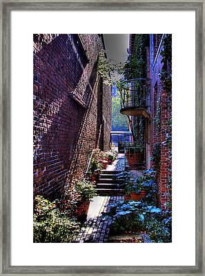 Pioneer Square Garden Pathway Framed Print by David Patterson