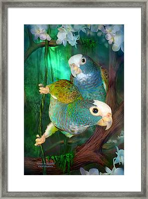 Pionus In Paradise Framed Print by Carol Cavalaris
