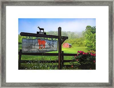 Pip Lynn Meadows Framed Print by Debra and Dave Vanderlaan