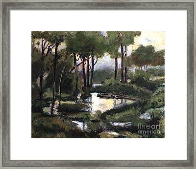 Pipe Creek Falls Framed Print by Charlie Spear