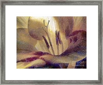 Pistils Framed Print by Odon Czintos