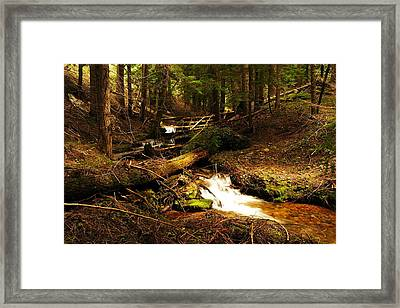 Placer Creek Framed Print by Jeff Swan