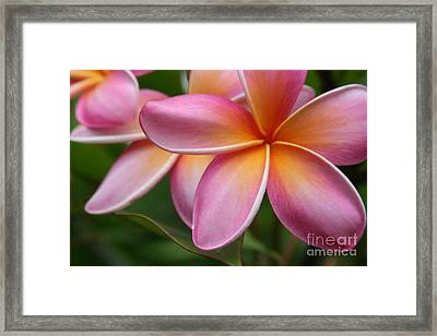 Places Of The Heart Framed Print by Sharon Mau
