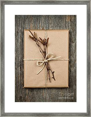 Plain Gift With Natural Decorations Framed Print by Elena Elisseeva