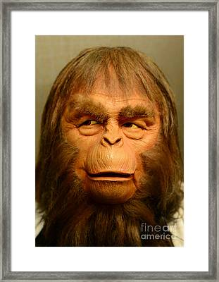 Planet Of The Apes - Dr. Zaius Framed Print by Paul Ward