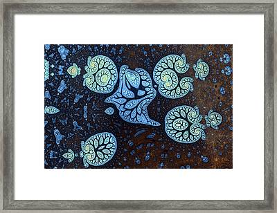 Plankton No. 1 Framed Print by Mark Eggleston