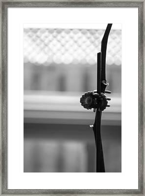 Plant Clip Framed Print by VJ Bobnicoff